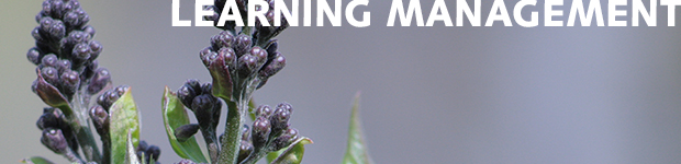 learningmanagement